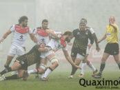 champions-cup-zebre-stade-toulousain-05